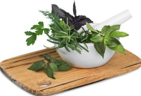 Herbs-List